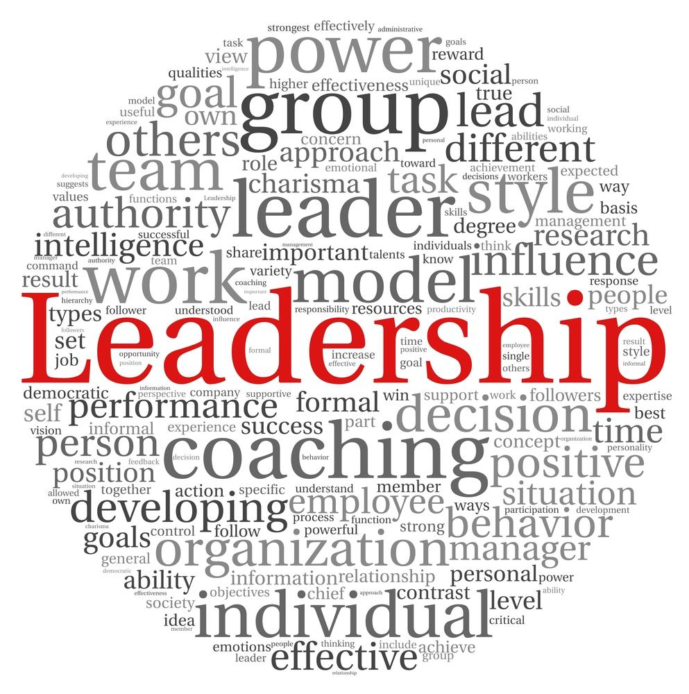 power influence leadership approach